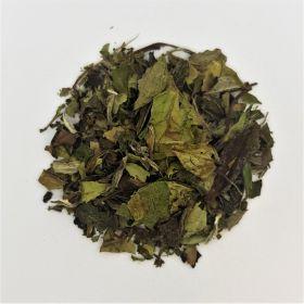 Pai Mu Tan Organic White Tea